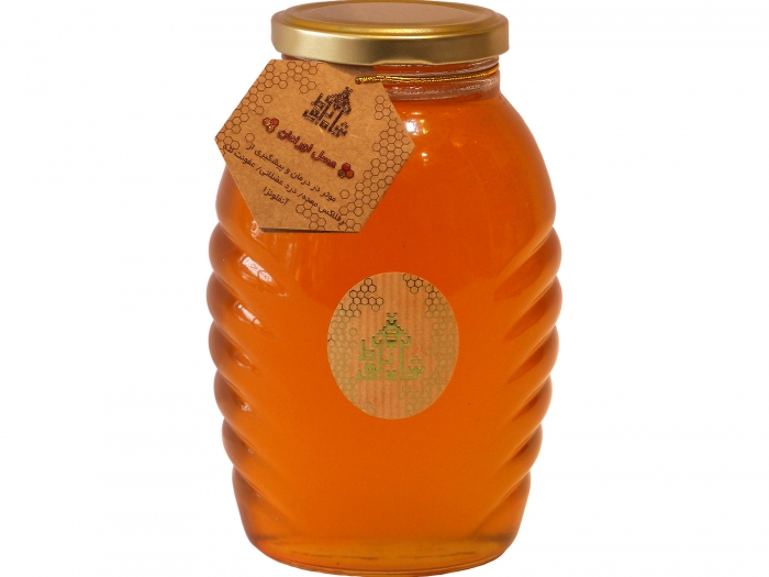 عسل طبیعی اورامان شاه بلوط
