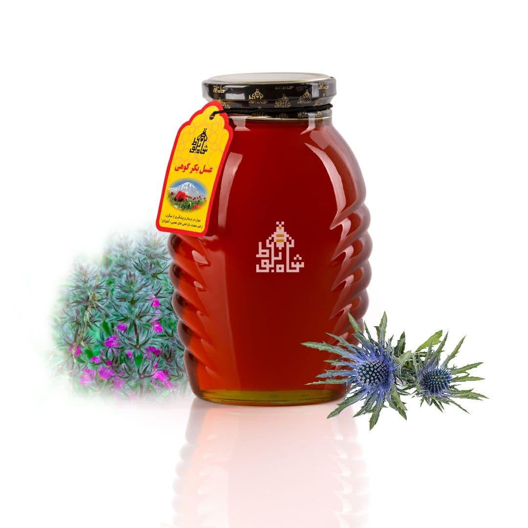 عسل بکر کوهی 500 گرمی شاه بلوط